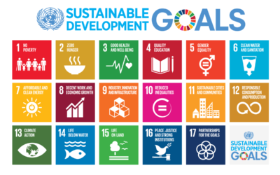 ONU y URJC presentan en Madrid aprendizajes en ODS